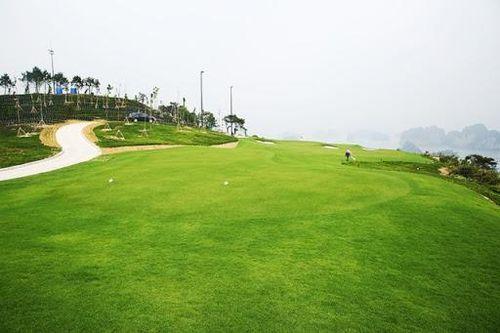 Sau sân golf Vân Trì, nhiều sân golf đóng cửa