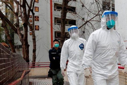 Hồng Kông: Tìm thấy virus SARS-CoV-2 trong đường ống chung cư