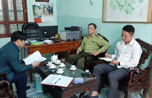 Thanh Hóa: Điều chuyển Hạt trưởng hạt kiểm lâm vì liên tiếp để xảy ra phá rừng