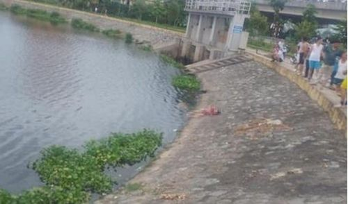 Phát hiện thi thể bé gái nổi ở hồ, chưa tìm được thân nhân