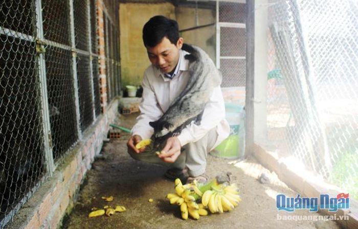 Báo Doanh Nghiệp: Quảng Ngãi: Ham nuôi loài nhìn ghê, bán giống 5-7 triệu/con