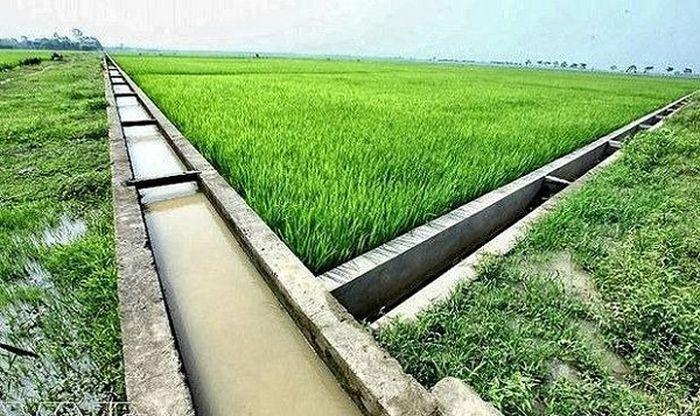 Báo TNMT: Quảng Ngãi: Tăng cường phát triển thủy lợi nội đồng và tưới tiên tiến, tiết kiệm nước