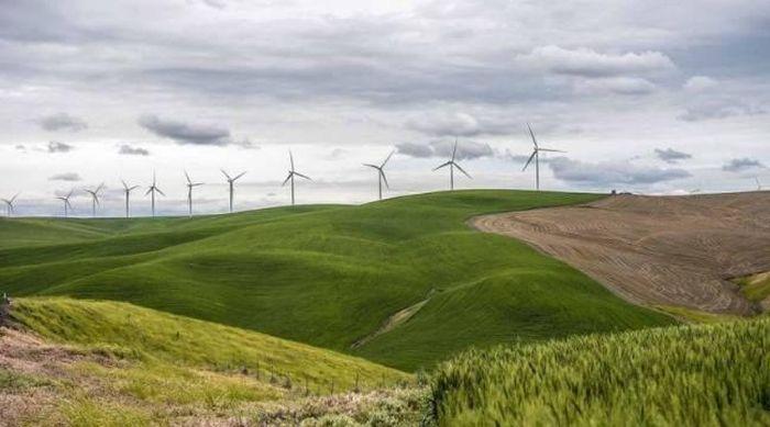 Kết quả hình ảnh cho Năng lượng gió ở Mỹ đã rẻ hơn khí đốt