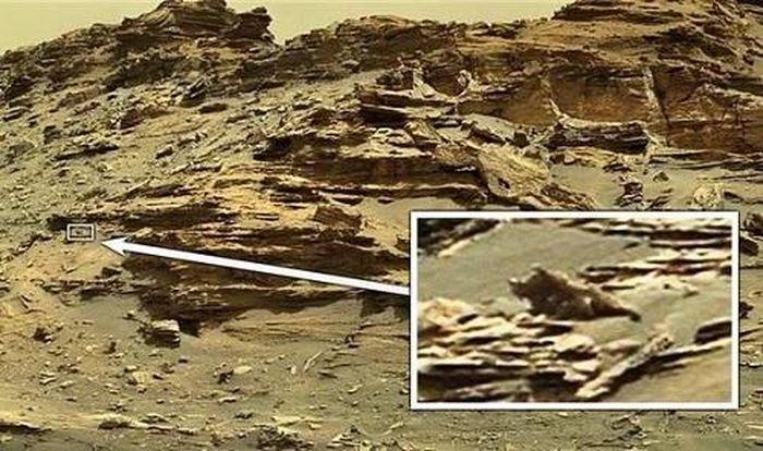 Thợ săn UFO phát hiện 'thằn lằn ngoài hành tinh' trên Sao Hỏa